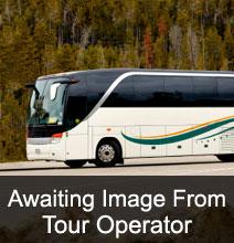 Hogmanay Coach Tours
